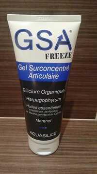 AQUASILICE - GSA Freeze - Gel surconcentré articulaire