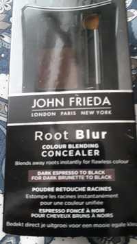 JOHN FRIEDA - Root blur coulour blending