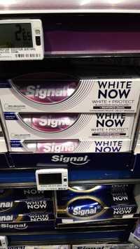 SIGNAL - White now - Toothpaste white + protect