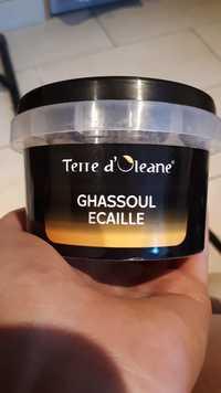TERRE D'OLEANE - Ghassoul écaille
