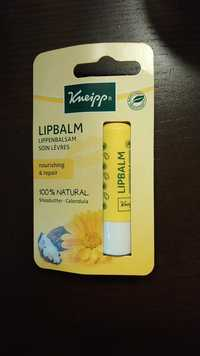 Kneipp - Lipbalm - Lippenbalsam soin lèvres