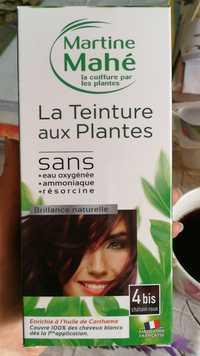 MARTINE MAHÉ - La teinture aux plantes 4 bis châtin roux