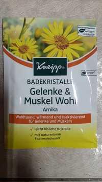 KNEIPP - Gelenke & Muskel Wohl arnika