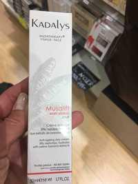 KADALYS - Musalift - Rides visibles jour