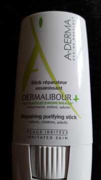 A-Derma - Dermalibour + - Stick réparateur assainissant
