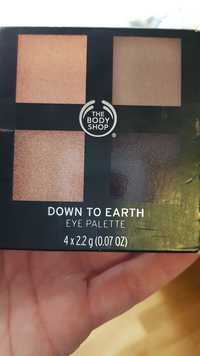 The Body Shop - Down to earth - Eye palette