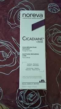NOREVA - Cicadiane crème - Soin réparateur apaisant visage & corps